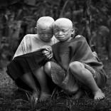 Mhoje_albinostete_photo_jpg