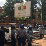 zimelections