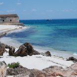 islandofmozambique.dw