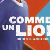 Like Lion-France