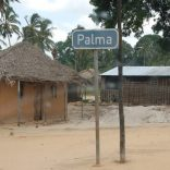 anadarko palma