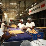 breadfactory.tt