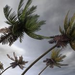storm.file