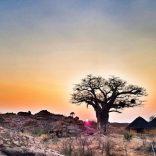 mapungubwe_sunrise