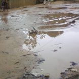 rains.maputo