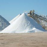 salt.file