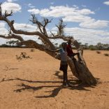 drought.wfp