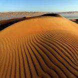land.decay.desert