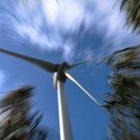 renewbles.lusa