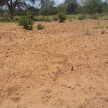 Drought.file_.dw_