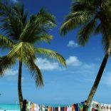 Caribbeans