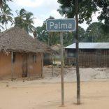 Palmapalma