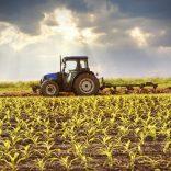 Mhje_farming_photo_jpg
