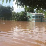 Busi.floods.not_