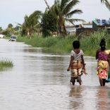 Floodsfilelusa